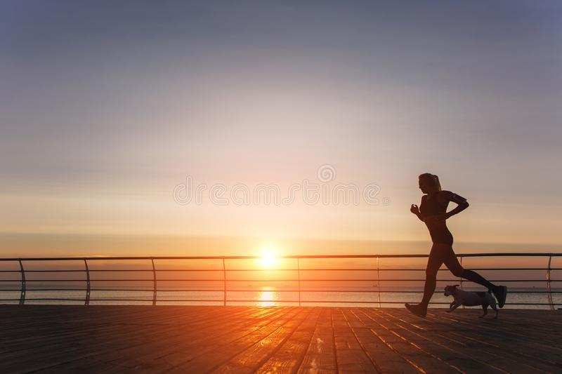 Silhouette of a young beautiful athletic girl with long blond ha royalty free stock photo