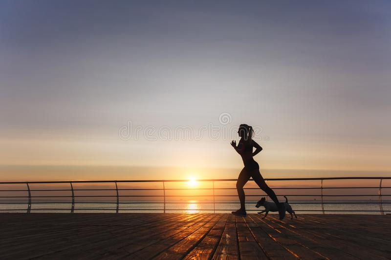 Silhouette of a young beautiful athletic girl with long blond ha stock image