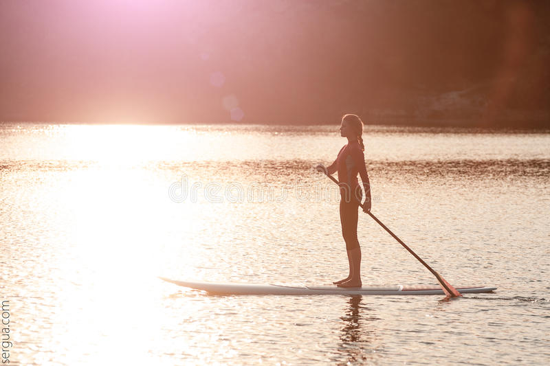 Silhouette of young girl paddle boarding at sunset01 royalty free stock images
