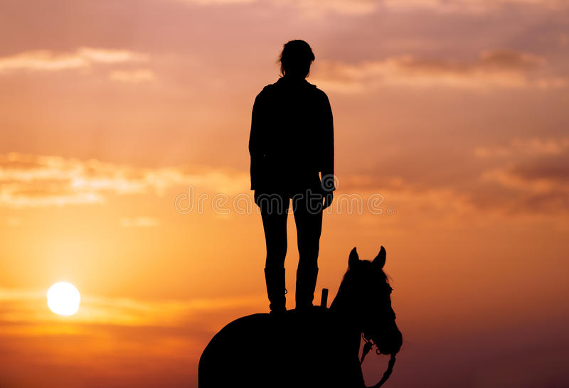 Silhouette of a young girl who is standing on a horse and looks into the distance royalty free stock photo