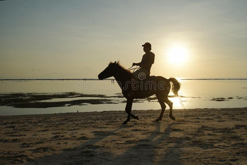 Horseback riding silhouette at sunset time royalty free stock photography