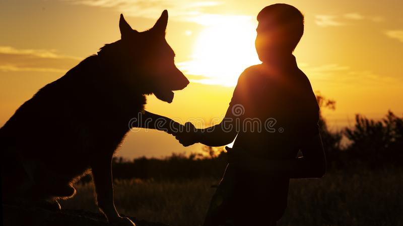 Silhouette of a young man shaking paw his favorite dog in a field at sunset, boy with a purebred pet German Shepherd walking on. Nature, concept friendship of royalty free stock images