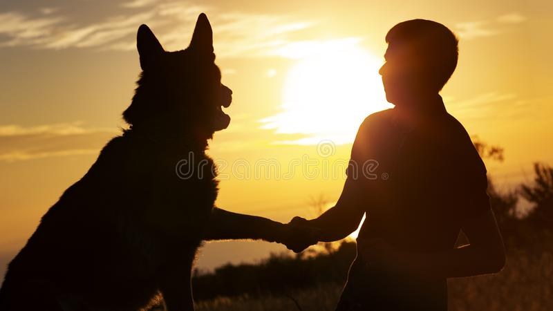 Silhouette of a young man shaking paw his favorite dog in a field at sunset, boy with a purebred pet German Shepherd walking on. Nature, concept friendship of stock photos