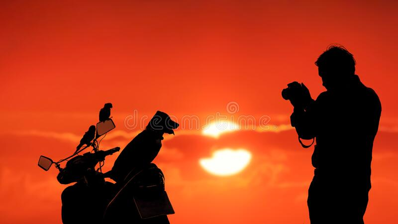 Silhouette young man using camera to taking picture of his pets [puppy and 2 parrots] on motorcycle with blurred colorful sunset. Sky background stock photography