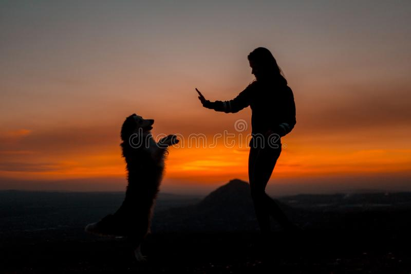 Silhouette of young woman with his dog doing trick at dawn with mountain on background. stock images