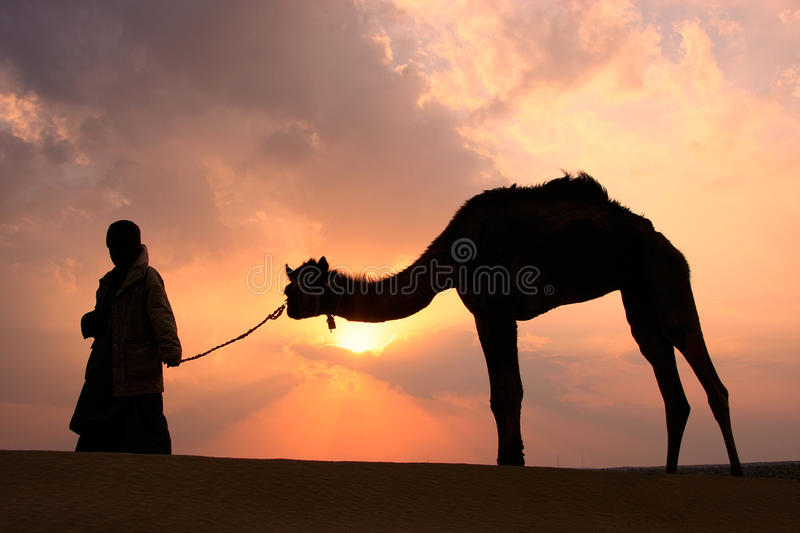 Silhouetted bedouin walking with his camel at sunset, Thar desert near Jaisalmer, India stock photography