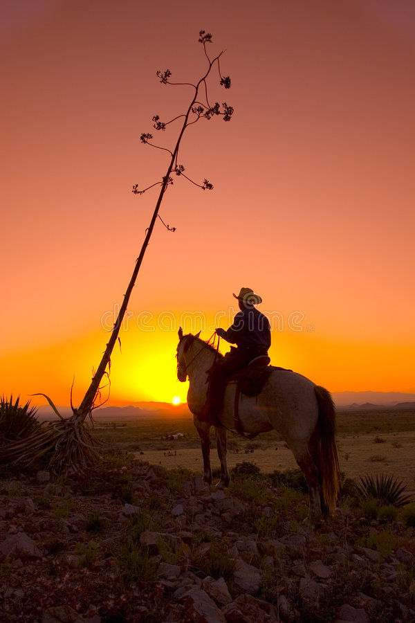 Silhouetted Cowboy Stock Photography