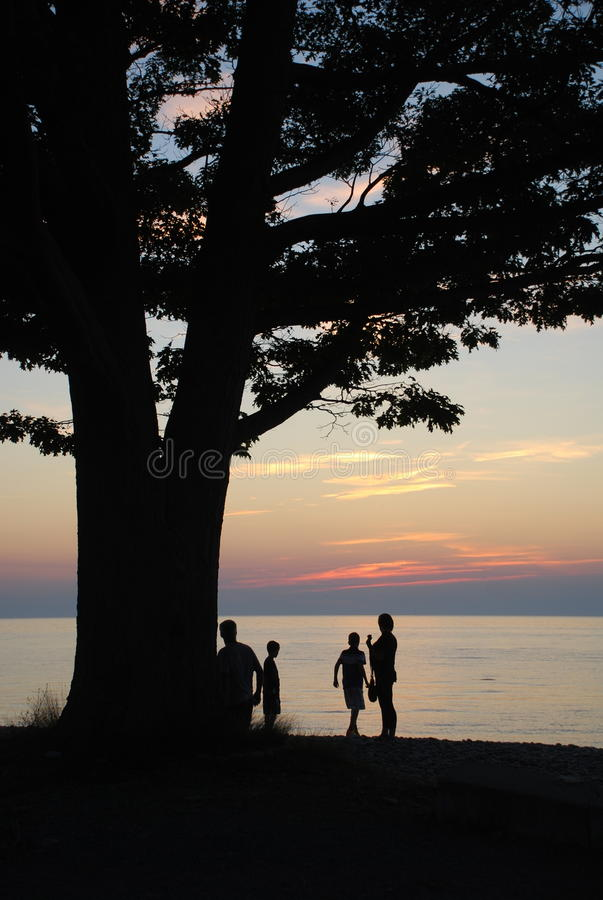 silhouetted family and tree on water stock photography