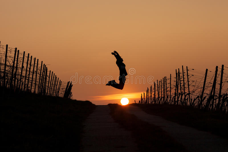 Silhouetted man jumping in sunset. In vineyard stock photo