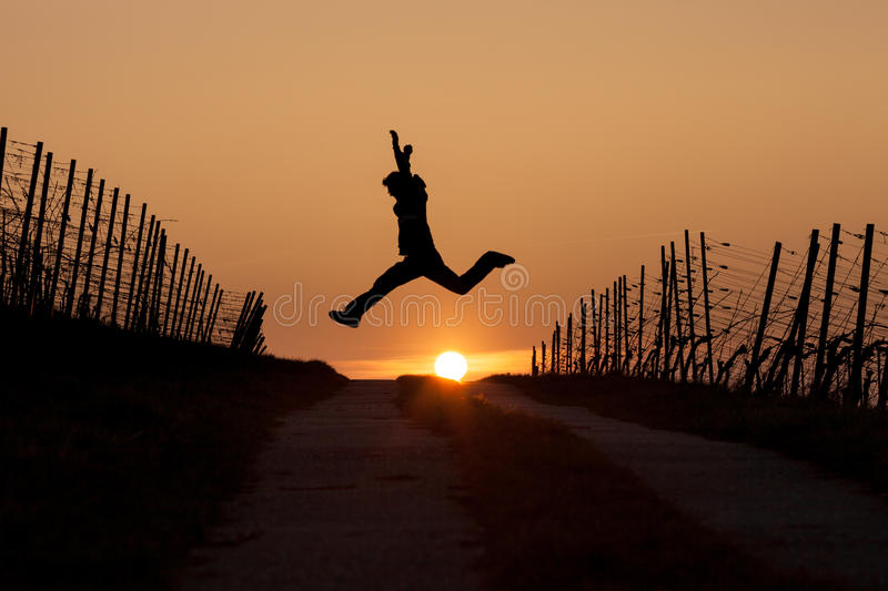 Silhouetted man leaping in sunset. In vineyard stock photo