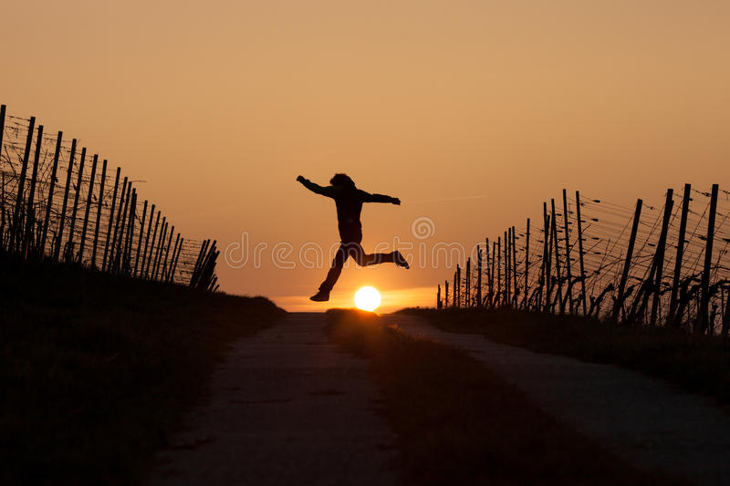 Silhouetted man running in sunset. In vineyard royalty free stock photos