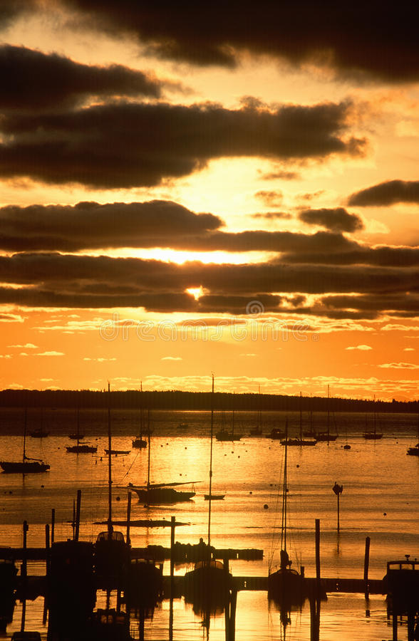 Silhouetted sailboats in harbor at sunset. Mt. Desert Island, Maine royalty free stock images