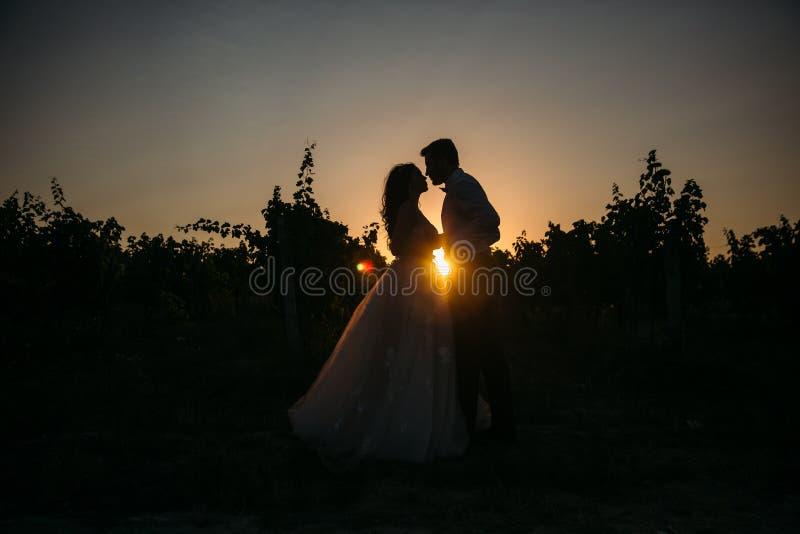 Silhouetteert bruidbruidegom die zich op de wijngaard bevinden en teder elkaar zonsondergang bekijken Concept liefde en stock foto's