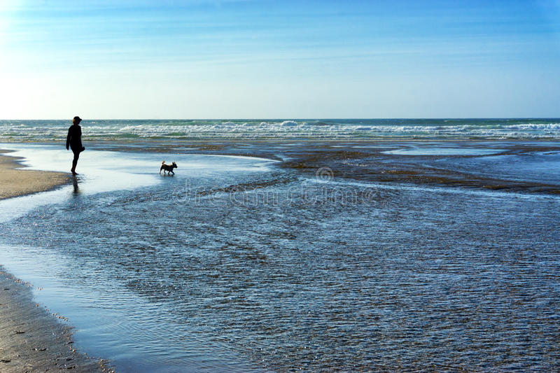 silhouetten op het strand royalty-vrije stock foto