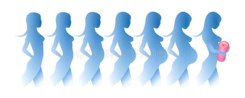 Silhouetten van de ontwikkeling van een zwangerschap stock illustratie