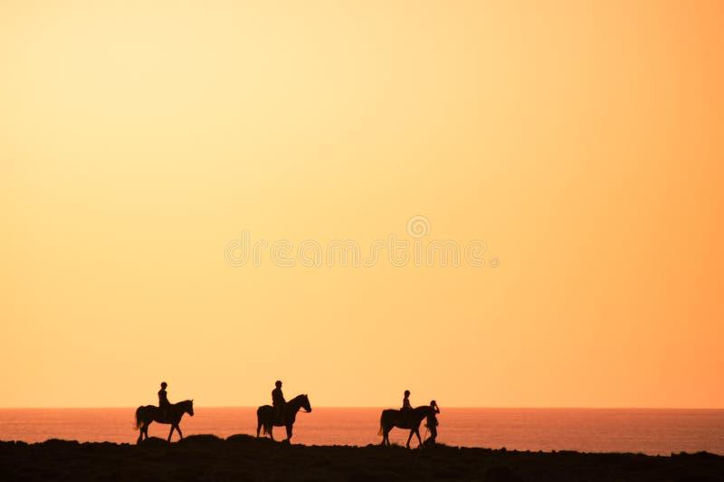 Silhouetten van de paardruiters royalty-vrije stock fotografie