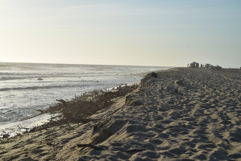 Silhouetten van van de de partijschemer van het groeps mensen strand de oceaankust Baja, Mexico stock fotografie