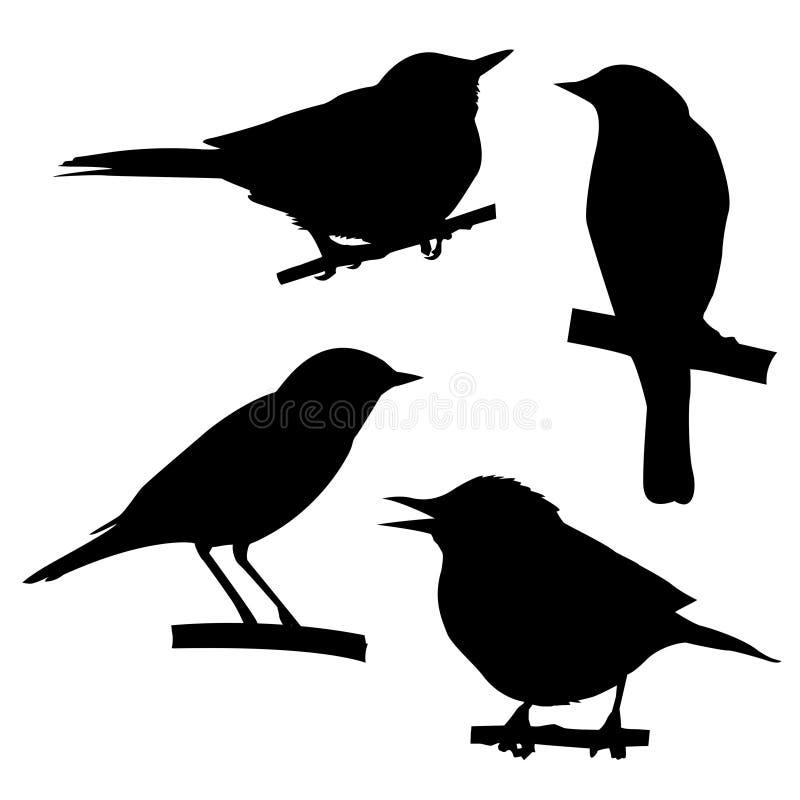 Silhouetten van de vogels royalty-vrije illustratie