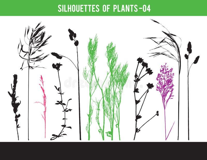 Silhouetten van delen van installaties, bladeren, bloemen, vectorillustratie vector illustratie