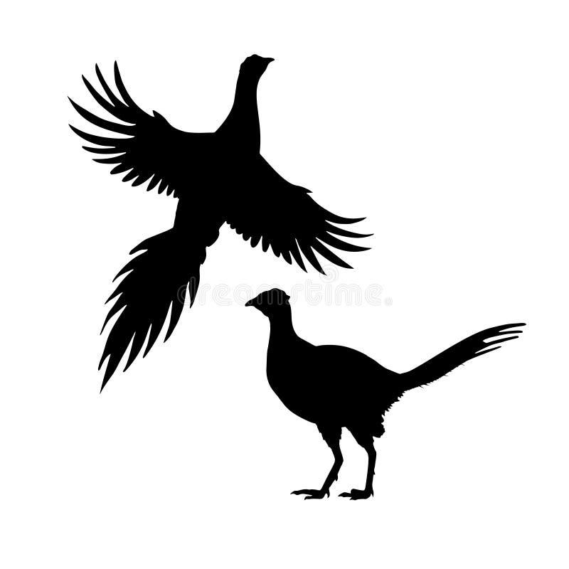Silhouetten van fazant Reeks pictogrammen Het vliegen en statusvogel Vector illustratie royalty-vrije illustratie