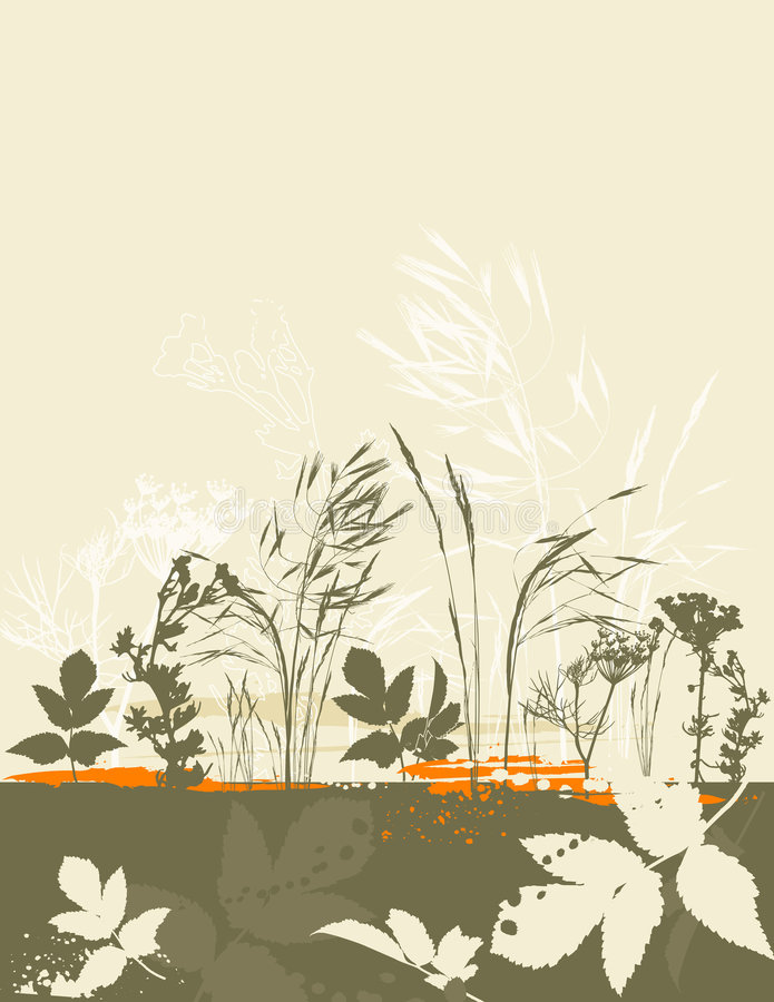 Silhouetten van gras, vector vector illustratie