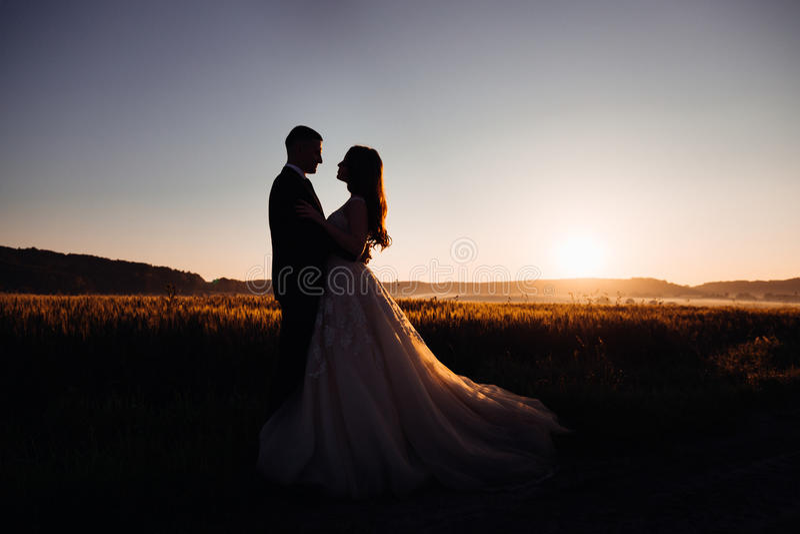Silhouetten van het luurious huwelijkspaar koesteren royalty-vrije stock afbeelding