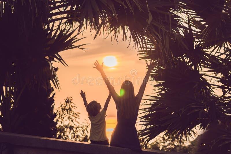 Silhouetten van moeder en zoon, die de zonsondergang in de keerkringen tegen de achtergrond van palmen ontmoeten stock foto