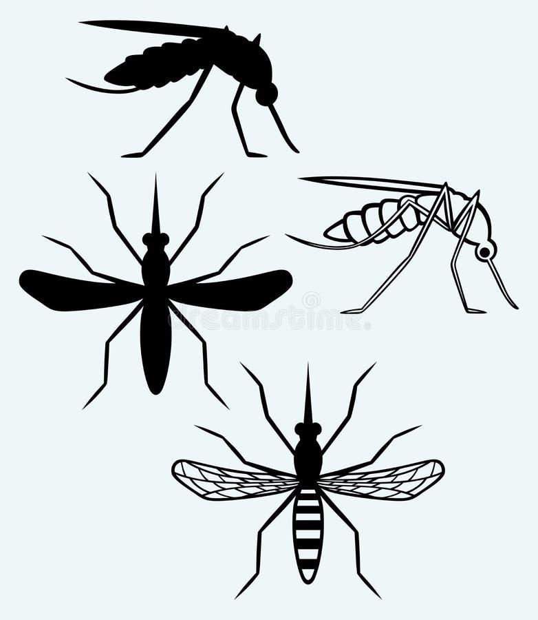 Silhouetten van mug royalty-vrije illustratie