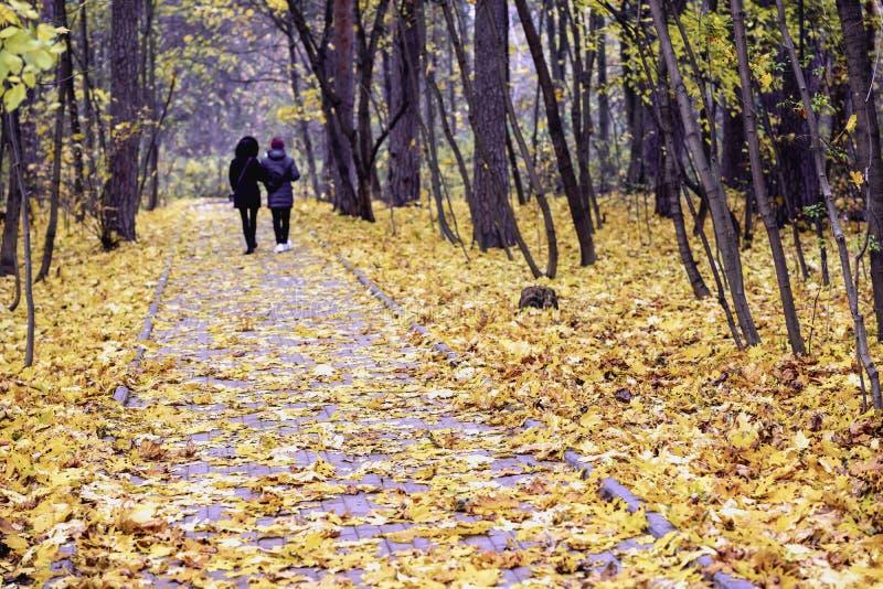 Silhouetten van twee onherkenbare meisjes, gang in het de herfstpark Seizoenen, nostalgische stemming, vriendschapsconcept royalty-vrije stock afbeelding