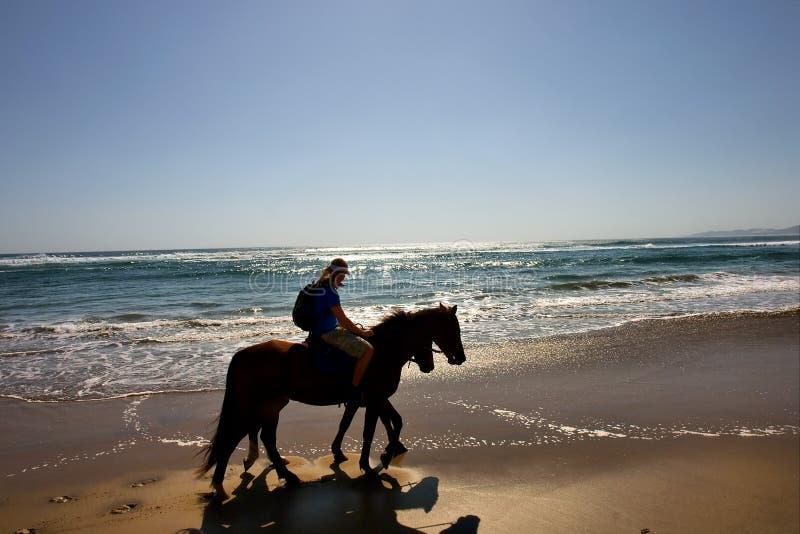 Silhouetten van twee paardruiters op strand stock fotografie