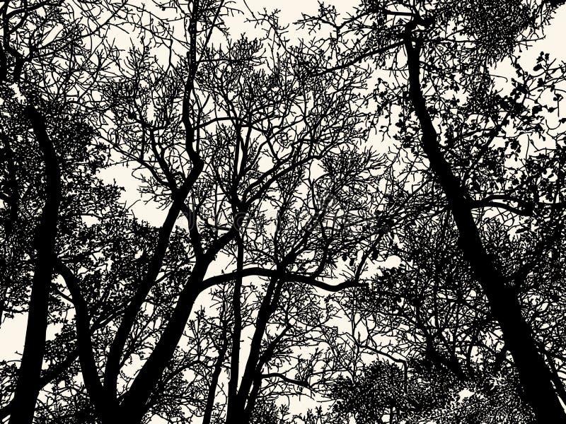 Silhouetten van vergankelijk bos in het koude seizoen royalty-vrije illustratie