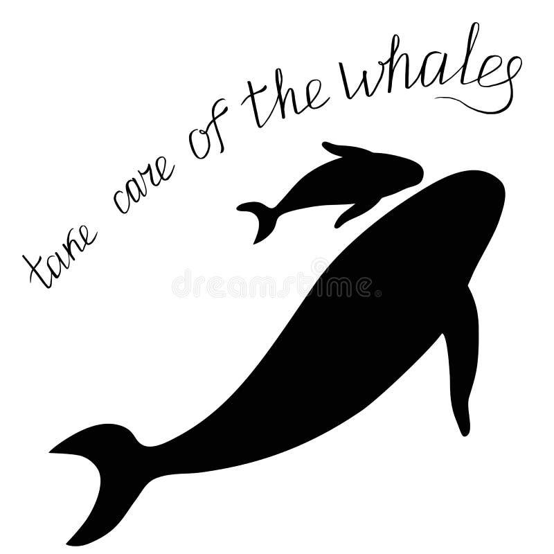 Silhouetten van walvissen met de Inschrijving royalty-vrije illustratie
