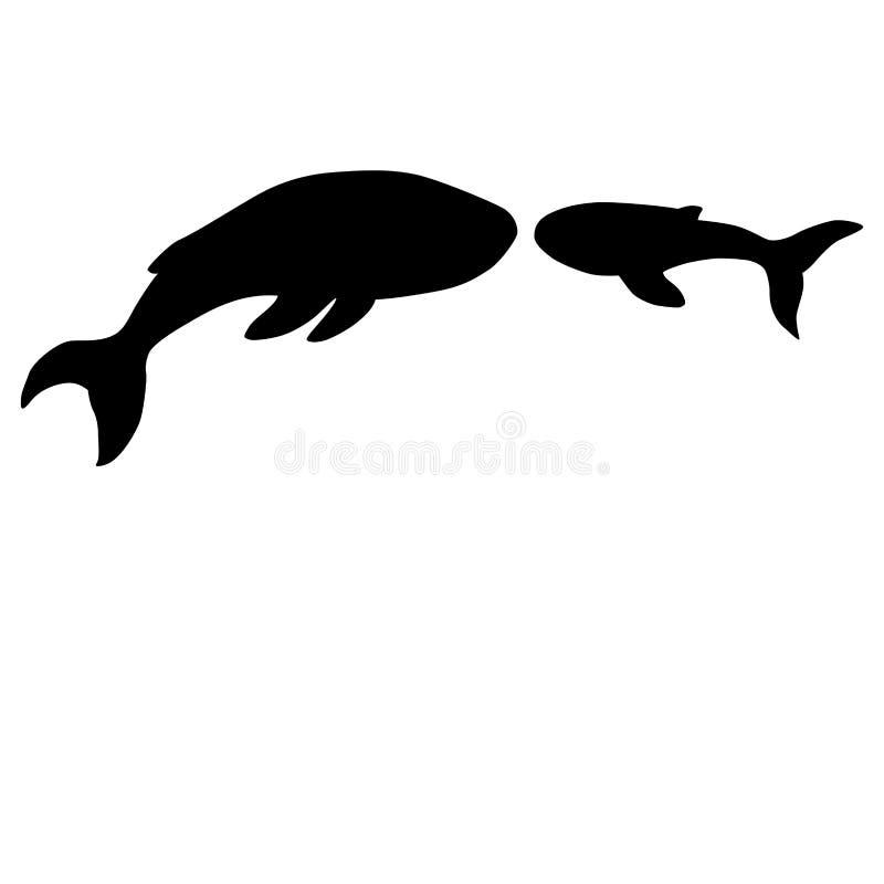 Silhouetten van walvissen op een witte achtergrond vector illustratie