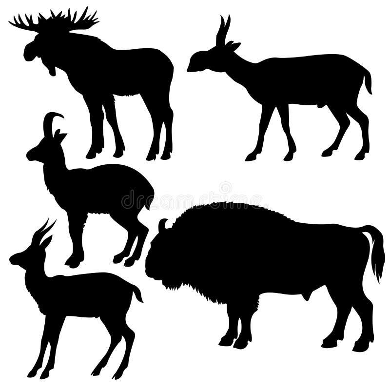 Silhouetten van wildlifes royalty-vrije illustratie