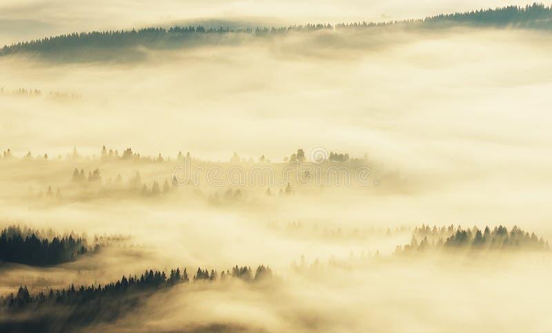Silhouettes av berg dimmig morgon för höst Gryning i Carpathiansna royaltyfri foto