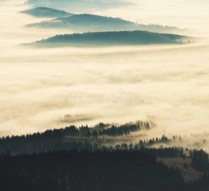 Silhouettes av berg dimmig morgon för höst Gryning i Carpathiansna arkivbilder