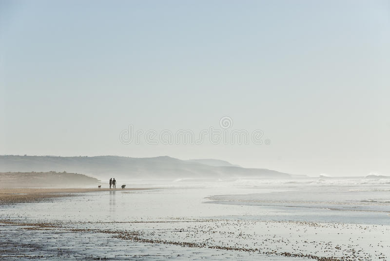 Download Silhouettes on the beach stock photo. Image of foam, surf - 23419852