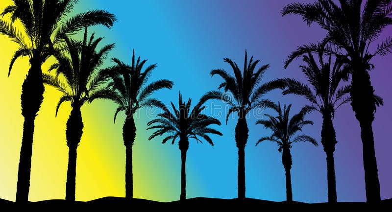 Silhouettes of beautiful palm trees on a bright background, meaning morning, day and night.  vector illustration