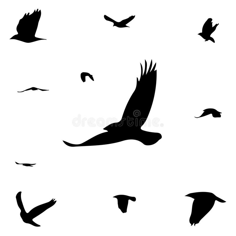 Silhouettes of birds royalty free illustration