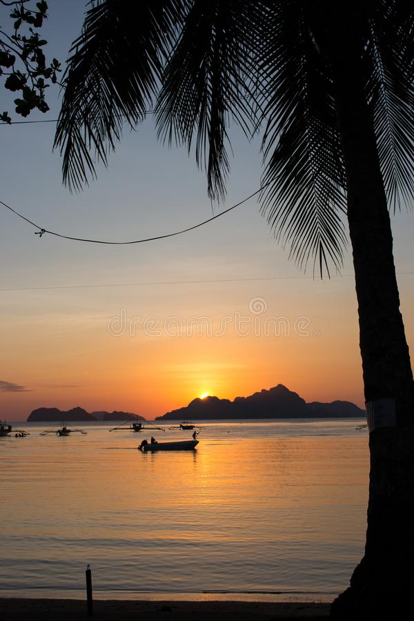 Silhouettes of boats and palm tree in tropical harbor in evening. Sunset in lagoon in Philippines, Palawan. Sunset on beach. Silhouettes of boats and palm tree stock photos