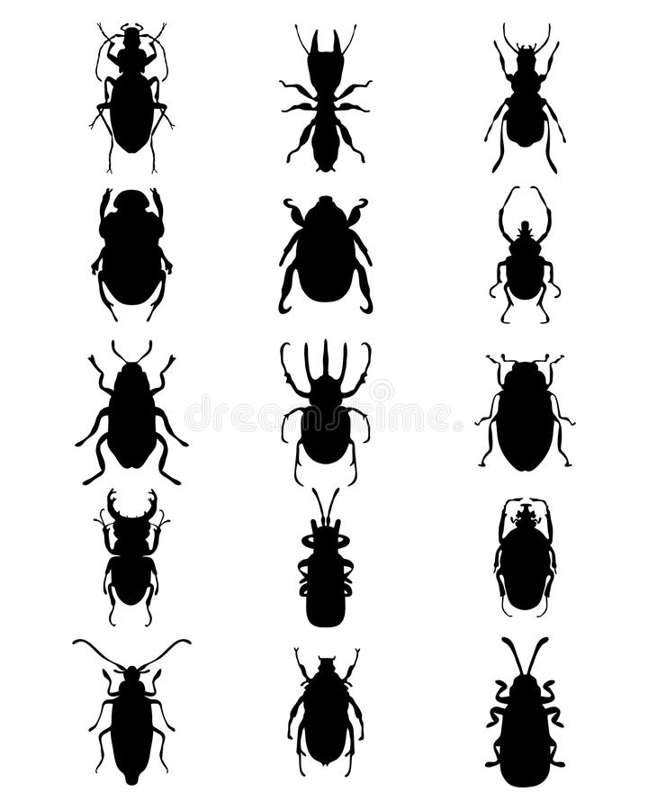 Silhouettes of bugs. Black silhouettes of different bugs royalty free illustration