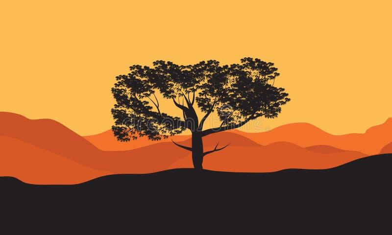 Silhouettes d'arbre dans le désert illustration stock