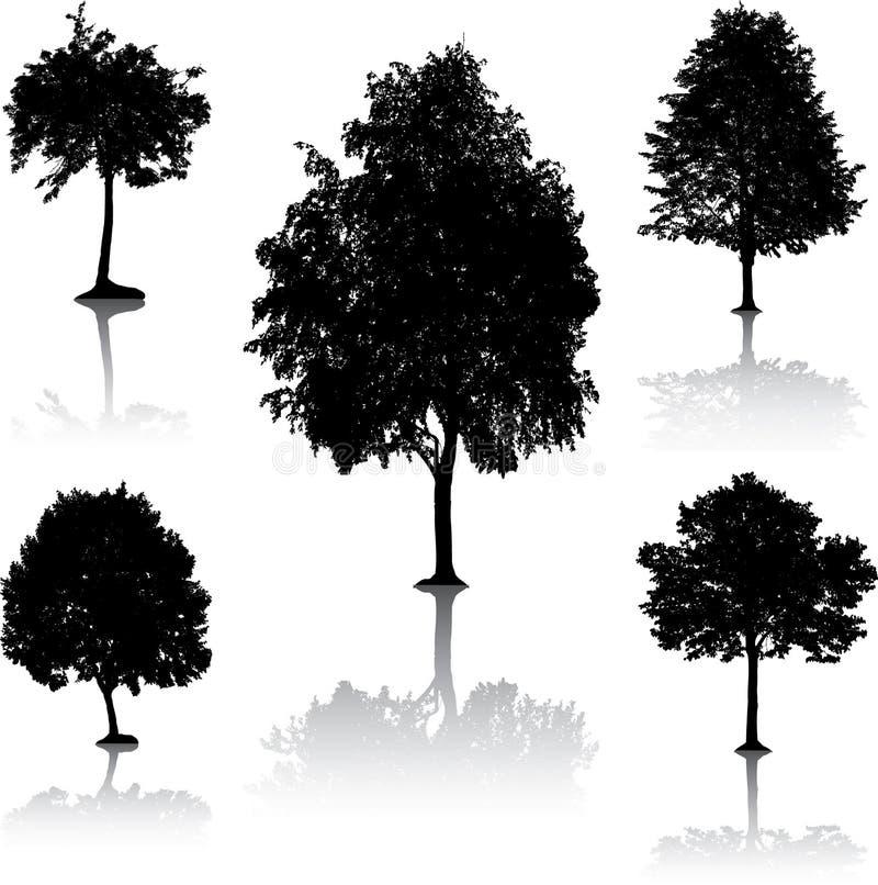 Silhouettes d'arbre. [Vecteur].