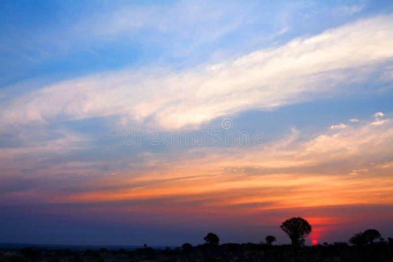 Silhouettes d'arbres de tremblement sur le fond lumineux de ciel de coucher du soleil, paysage africain magnifique dans Keetmansh images libres de droits