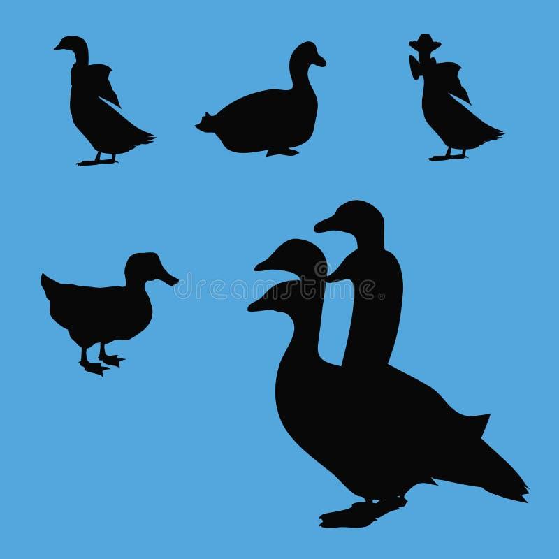 Silhouettes d'oies de canard photographie stock libre de droits