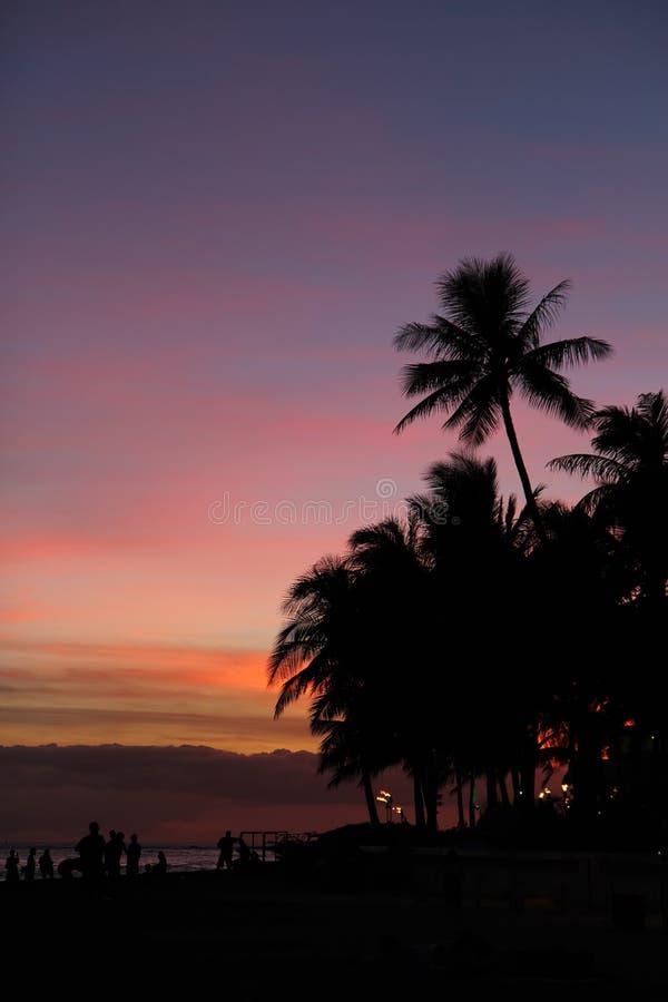 Silhouettes de coucher du soleil sur la plage de Waikiki, Oahu, Hawaï images libres de droits