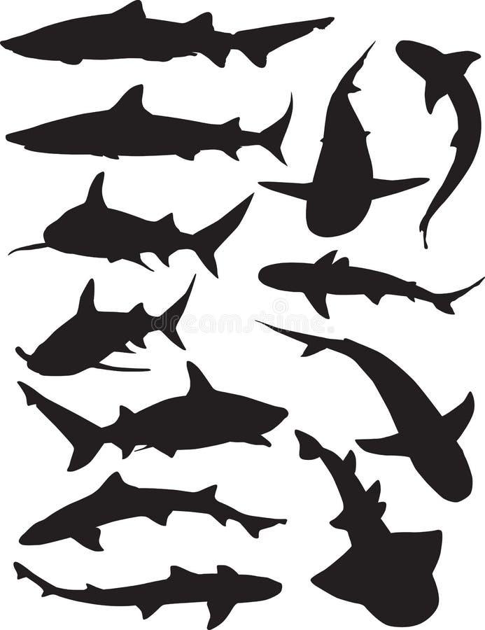 silhouettes de requin illustration libre de droits