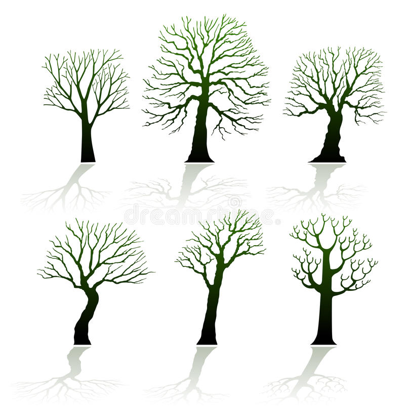 Silhouettes de vecteur d'arbre illustration stock