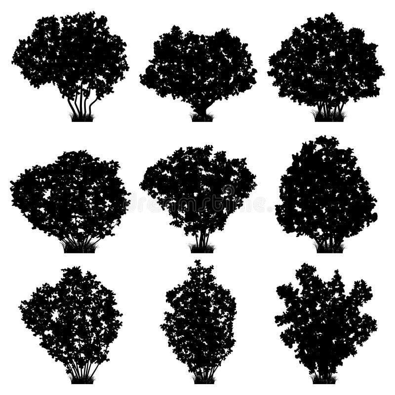 Silhouettes de vecteur d'arbustes illustration de vecteur