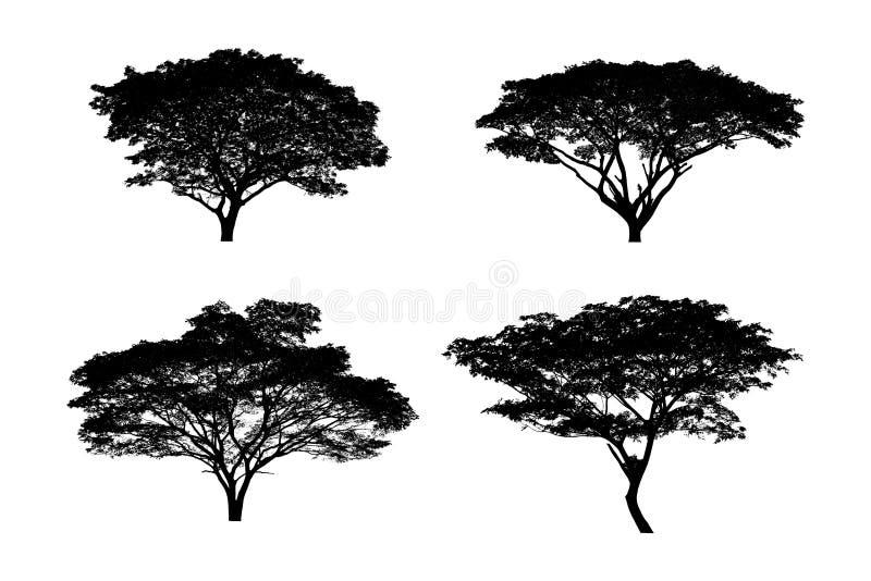 silhouettes den svarta illustrationen f?r bakgrund treevektorwhite royaltyfri bild